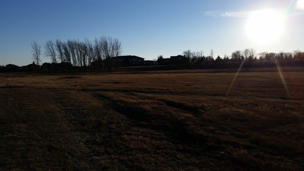 City of Brandon - Cemetery Expansion Master Plan