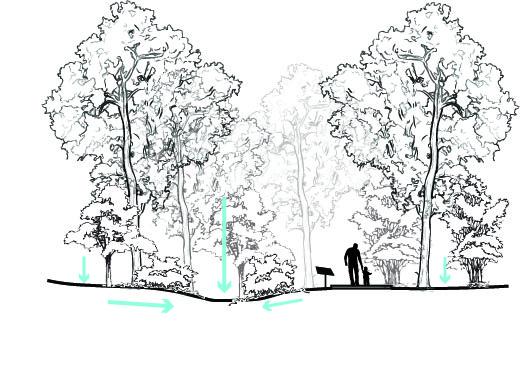 Powell Beach Park Plan