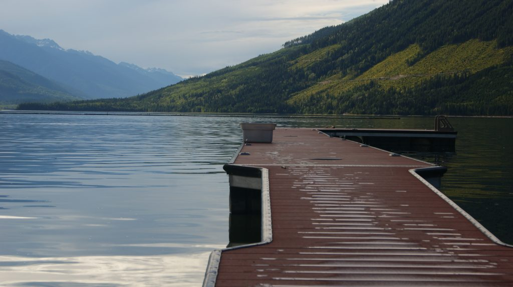 BC HYDRO ARROW LAKES RECREATION DEMAND STUDY