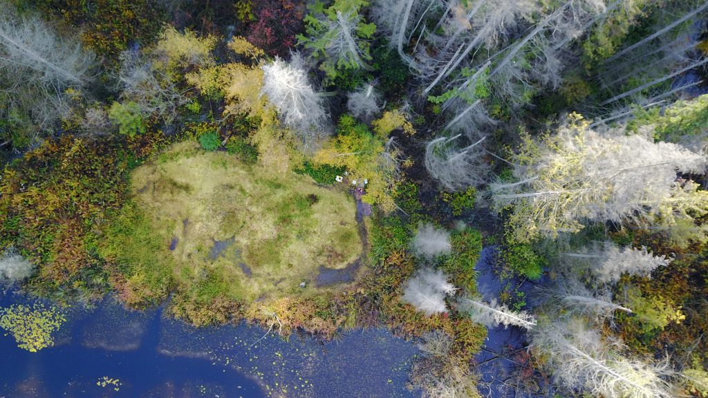 Aerial Footage from Beaver Lake