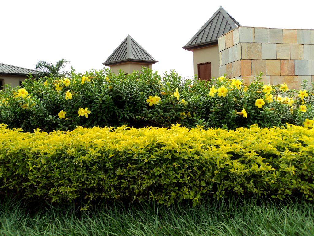 Gethsemane Memorial Garden